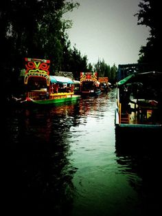 One of my favorite places to visit. Xochimilco