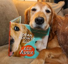 The Writer's Dog: Ask Anna--Advice for the Furry and Forlorn- Review and Giveaway