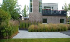 Idea to add tall grasses like shown along pathways to cabin and guest house. Hershberger Design