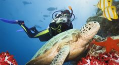 GlobeQuest Travel Club Reviews Deep-Sea Diving in Cozumel