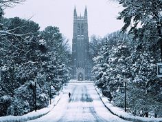 Duke Snowy Chapel Drive Canvas Print / Canvas Art by Duke University