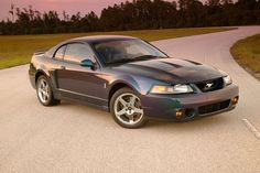 "2004 Ford Mustang SVT Cobra -   2004 Ford Mustang SVT Cobra For Sale - CarGurus - Ford mustang svt-cobra  sale - car classifieds  state Ford mustang svt cobra in doral fl 2003: red: 23544: $25000: ford mustang svt cobra in seattle wa 2003: black: 61144: $21940. 2003-2004 ford mustang svt cobra ""terminator"" design - youtube This video talks about some of the interesting things about one of the most inspiring muscle cars ever made- the 2003-2004 ford mustang cobra code named. For sale 2004…"