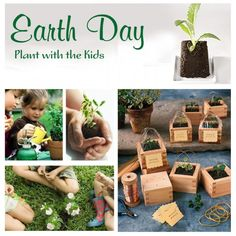 Earth Day Activity - plant with kids