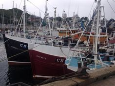 Fishing boats at Tarbert Scotland Tours, West Coast Scotland, Scottish Terrier, Beautiful Places To Visit, Fishing Boats, Sailing Ships, To Go, Image, Scottish Terriers