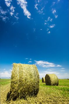 The Hay Bales Time! - The hay bales are one of my favorite landscapes at this time of year. These are little monsters quietly sitting in full heat, under the blue sky...  #Landscape, #Photography