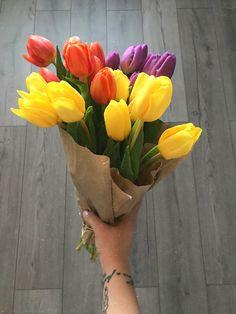 Tulips 🌷 Flower Shop Design, Tulips, Planter Pots, Flowers, Royal Icing Flowers, Tulip, Flower, Florals, Floral