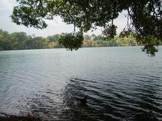Kratermeer in Banlung, Cambodja. #banlung #cambodja #vulkaan #reizen #azie