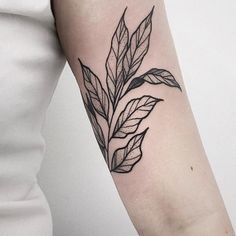 leaf inner arm tattoo, line art inspired, minimal shading - Tattoo - Minimalist Tattoo Arm Tattoos Beautiful, Love Tattoos, Body Art Tattoos, Small Tattoos, Tattoos For Women, Line Art Tattoos, Arabic Tattoos, Back Of Arm Tattoo, Tattoo Arm