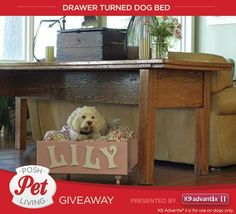 Pin an image and enter for a chance to win $5,000 and a year-long supply of K9 Advantix® II for your dog.  10 additional winners will receive a half-year supply of K9 Advantix® II. No purchase necessary. Ends 8/29/14. To enter and complete details visit www.diynetwork.com/petslivingposh.
