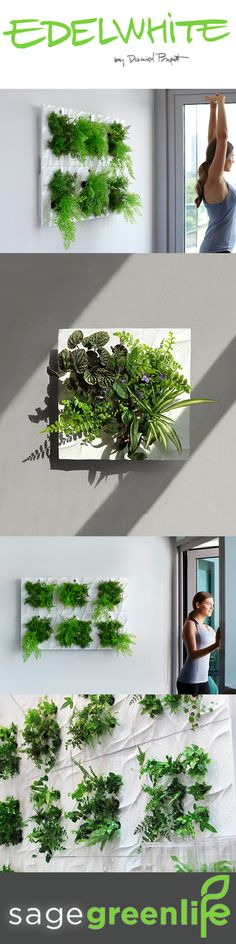 EDELWHITE is a living wall system with endless possibilities. Sign up for our mailinglist for an exclusive discount