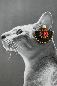 Lovecats Little Cat Earring
