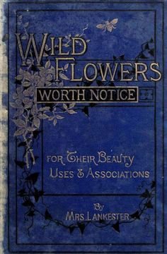 Book cover for 'Wild Flowers Worth Notice' by Mrs Lankester; with 108 coloured figures from drawings by J.E. Sowerby. Published 1879 by David Bogue