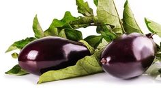 Florida Market Eggplant Seeds QTY. 100