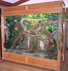 19 Best Diy Reptile Terrarium Images Reptile Terrarium Terrariums
