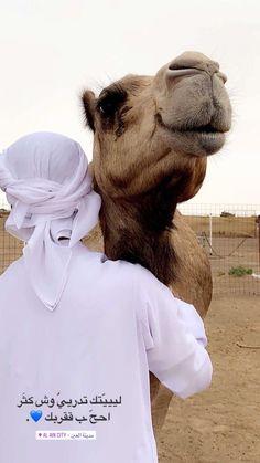 عد الرمل ما بين بوظبي و العين  . . واعرف غلاك في قلبي دبلها💛ء Love In Arabic, Beautiful Arabic Words, Arabic Love Quotes, Photo Quotes, Picture Quotes, Iphone Photo Editor App, Abu Dhabi, Cute Braces, Arabic Tattoo Quotes