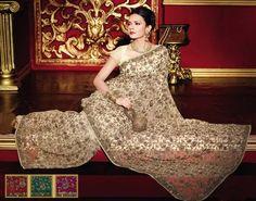 Beautiful sari....