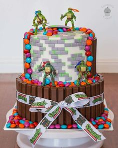 TMNT Cake with smarties