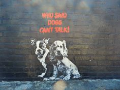 """To quote the legendary street artist Banksy, """"Dogs are the original graffiti artists."""""""