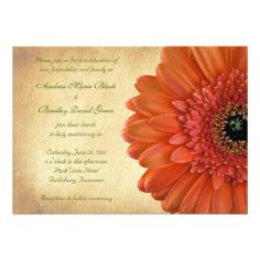 Orange Coral Gerbera Wedding Invitations