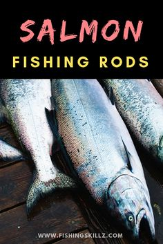 Learn some Basic Guides on Bass Fishing - Fishing Tips Trout Fishing Rods, Bass Fishing Tips, Best Fishing, Kayak Fishing, Fishing Guide, Fishing Tricks, Fishing Stuff, Fishing Tools, Crappie Fishing