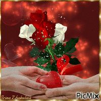 Vote Sticker, Gif Photo, Love Couple, Dear Friend, Beautiful Roses, Bing Images, Projects To Try, Holiday Decor, Creative