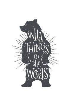 Poster - Wild bear