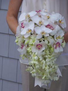 Cascading orchids wedding flower arrangements from Alan's Rumson Florist.  Read more about out floral designs on www.alansrumsonflorist.com