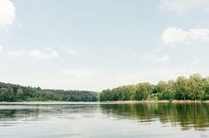 Free photo: Lake and forest