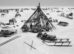 Sebastião Salgado in Siberia  For his latest epic project, Genesis, photographer Sebastião Salgado spent eight years documenting parts of the world untainted by modern life. Here, he shares the images he took of the nomadic Nenets of northern Siberia