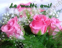 Love Sites, Happy Birthday, Plants, Text Posts, Flowers, Happy Brithday, Urari La Multi Ani, Happy Birthday Funny, Plant