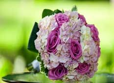 Professional wedding decorations and floral services at reasonable prices in Toronto. Call on: +1 647-894-1023 / 647-888-6650.