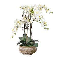 Kunstpflanze Orchideentopf, Antik, Kunststoff/ Keramik, ca. H58 cm Vorderansicht