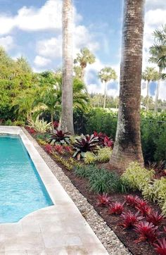 Palm Beach County landscape designer Pamela Crawford has a Masters degree in landscape architecture & offers georgeous renovations to back & front yards & pools areas. Landscaping Around Pool, Florida Landscaping, Tropical Landscaping, Landscaping With Rocks, Front Yard Landscaping, Landscaping Ideas, Landscaping Software, Florida Gardening, Dubai Garden