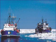 Bering Sea, Fishing Boat