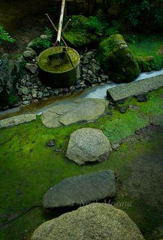Beautiful gardens of Kyoto