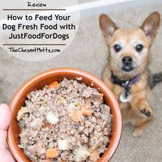 Review: How to Feed Your Dog Fresh Food with JustFoodForDogs Human Grade Dog Food, Russet Potato Recipes, White Rice Recipes, Dog Food Reviews, Frozen Dog, Beef Liver, Dog Food Brands, Dog Eating, Just Cooking