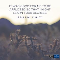 """In the midst of tests and trials, we can choose between two attitudes: """"Lord, why me?"""" or """"Lord, what are you trying to teach me?"""" Will you trust the Lord or harden your heart? """"It was good for me to be afflicted so that I might learn Your decrees."""" -Psalm 119:71 #Bible #Truth #Encouragement"""
