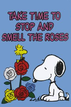 Take Time to Stop and Smell the Roses: My motto!!
