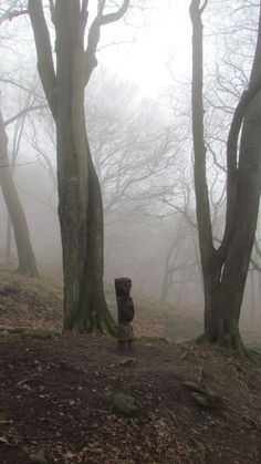 Chevin Forest Park, Otley