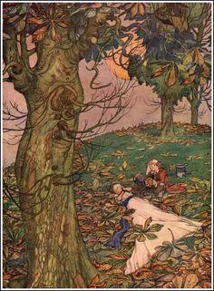 Illustration by W. Heath Robinson. (1872 - 1944)