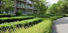 Residentie Willaard, Kapellen
