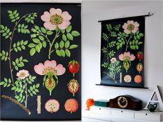 Top Five Botanical Prints | Happy Cactus Designs