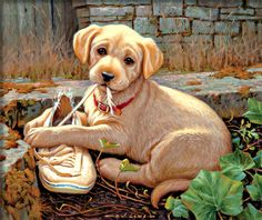 Shop Wild Wings for artwork by Jim Lamb, a wonderful collection of his famous portraits of playful puppies and young sporting dogs. Baby Animals, Cute Animals, Canvas Art Projects, Lab Puppies, Animal Paintings, Beautiful Dogs, Dog Art, Dog Friends, Dog Pictures