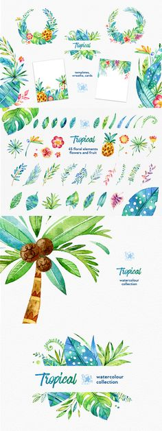 Tropical. Watercolour Collection - https://www.designcuts.com/product/tropical-watercolour-collection-40-off-intro-special/