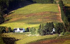 Wine Routes, South Africa--lovely Cape Dutch-style home! All About Africa, South African Wine, Kwazulu Natal, Africa Travel, List, Plan Your Trip, Photo Galleries, Beautiful Places, Cape Dutch