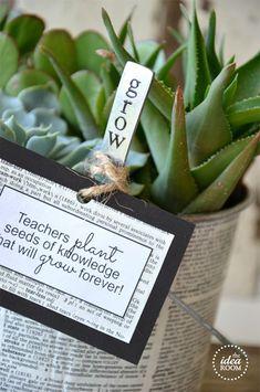 {12} 5-Minute Teacher Appreciation Gift Ideas, MoritzFineBlogDeisgns teacher gifts, gift ideas for teachers
