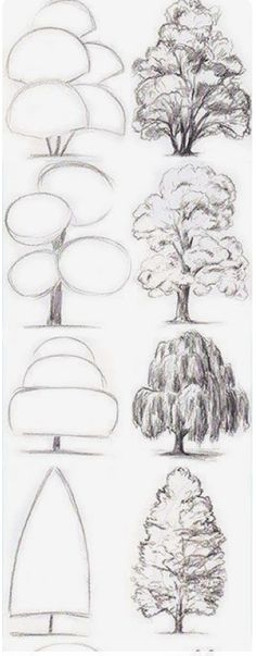 Drawing Tips Tree Drawing Tutorial. Start with basic geometric shapes. Drawing Techniques, Drawing Tips, Drawing Sketches, Painting & Drawing, Sketching Tips, Painting Trees, Basic Drawing, Drawing Drawing, Watercolor Trees