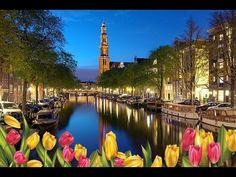 Амстердам  Прогулка по реке и каналам