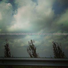 #tres #trio #three #trees #arboles #road #carretera #viaje #travel #traveling #movement #dynamic | por photomamp.com