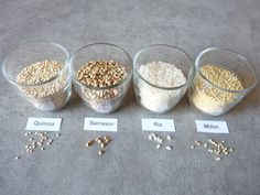 Céréales sans gluten: Régime sans gluten : le risque de développer une autre allergie ou intolérance alimentaire     Si vous prenez l'habitude de remplacer systématiquement les produits issus du blé par un même type de produit, le risque existe de développer à moyen terme une nouvelle intolérance alimentaire.    Si vous débutez un régime sans gluten ni lait, évitez de consommer tous les jours du riz, des galettes de riz, farine de riz, du lait de riz... au risque de développer une 2ème…